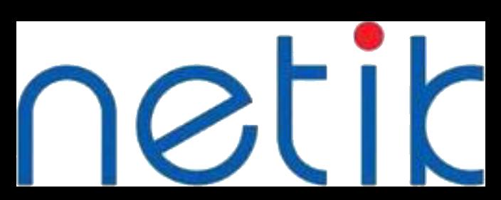 Netik Logo